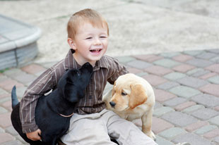 Boy With his pet dog